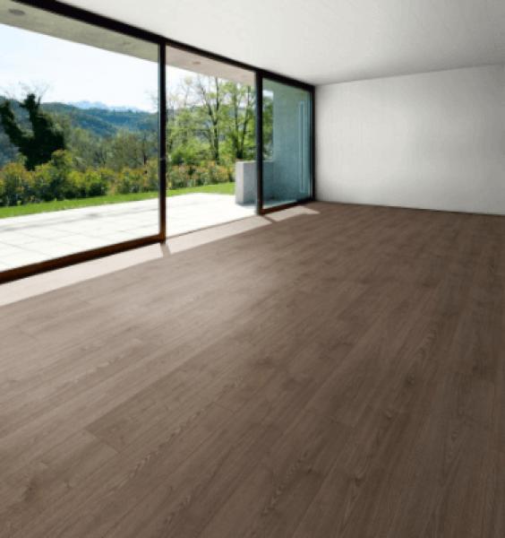 Gotthard Oak