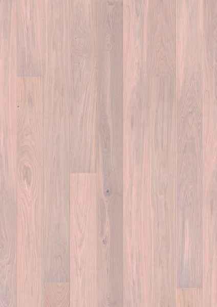 Oak Pearl